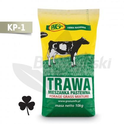 KP-1 mieszanka traw kośno-kiszonkowa