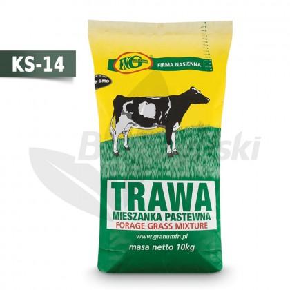 KS-14 mieszanka traw podsiewowa